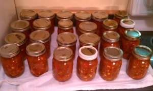 Batches of Salsa