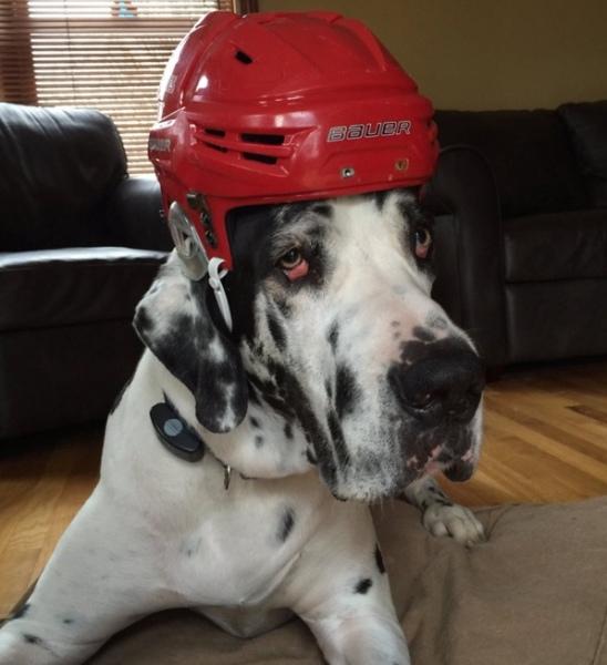 Ry in a Hockey Helmet